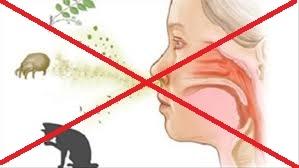 Kiêng kỵ trong quá trình điều trị Hen suyễn